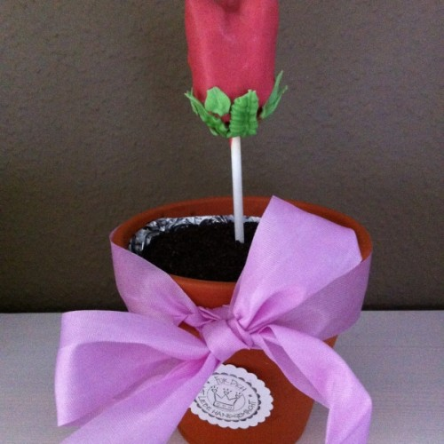Der fertige Blumentopfkuchen